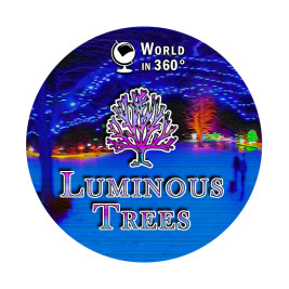 360° Video: Luminous Trees